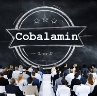 The Cobalamin (B­12) Conference