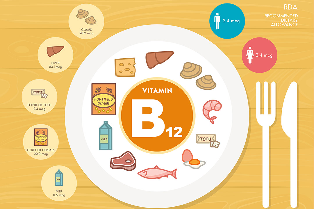 b12 food