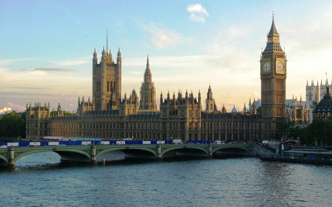Parliamentary Reception – We need your help!
