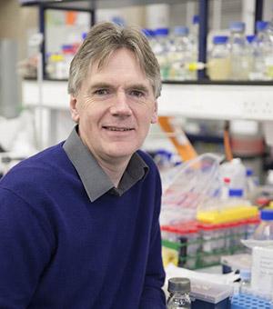 Prof Martin Warren
