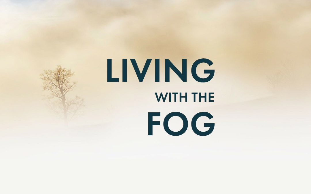 Living with the fog